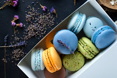 Colorful macaroons. Sweet macarons. (lyule4ik) Tags: macaroon sweet meringue bake cake france color cream dessert flavor almond chocolate cocoapowder delicacy different flour multicolored pistachios raspberries rotates savor spinning sugar taste vanilla bakery biscuit colorful confection confectionery cookie cuisine delicious food french gastronomy gourmet macaron pastry pink snack stack tasty traditional yellow