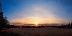 Halo (Olli Tasso) Tags: sun halo sunset field pelto haloilmiö lempäälä nurmi suomi finland rural countryside maalaismaisema maaseutu maisema landscape panorama panoraama spring kevät