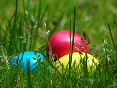Easter (R_Ivanova) Tags: nature garden green grass holidays easter eggs pascha macro colors color red yellow blue spring sony rivanova риванова природа макро трева великден ruby5