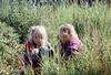 Biondo Tuva nell'erba