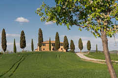 A9904830_s (AndiP66) Tags: agriturismoicipressini agriturismo icipressini pienza siena sanquiricodorcia valledorcia valle dorcia toscana tuscany italien italy sony alpha sonyalpha 99markii 99ii 99m2 a99ii ilca99m2 slta99ii sigma sigma24105mmf4dghsmart sigma24105mm 24105mm art amount andreaspeters