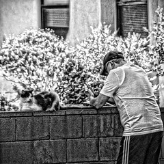 A cat and his man. (designerdeb) Tags: felines cats instagramapp square squareformat streeturbanarturbanstreetphotography photooftheday bwblackwhitephotography blackandwhitestreetphotographer streetbwstreetartstreetphotobw photography candidphotography streetshooter monochromedesignerdeb