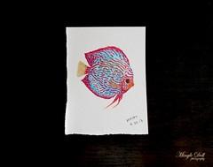 discus fish 2.jpg rs (Mingle Doll 鳴娃娃) Tags: tombow brushpen watercolor discusfish