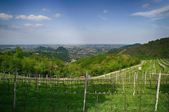 Panorama dal Pirio (tampurio) Tags: italy panorama parco verde clouds landscape italia nuvole hill hills cielo paesaggi vigne paesaggio colline padova arnie veneto collieuganei cielosky pirio