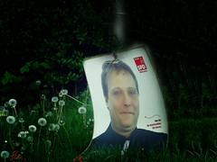 Love Me Do (Peter Schler) Tags: germany election flickr nrw beatles witten spd heven lovemedo kommunalwahl peterpe1