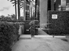 Cuidado, loading zone (Citizen 4474) Tags: california trees bw signs stairs concrete lumix parking palm panasonic tape caution stains bushes shrubs zone loading hedges gx1