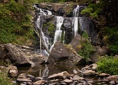 Stevensons Falls The Otways (laurie.g.w) Tags: ocean road park creek forest waterfall stream great falls national ferns otways stevensons the