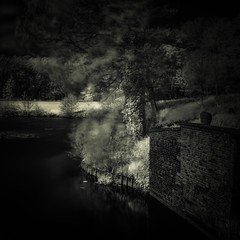 The wall, Deinze, Belgium, 2014 (janbeernaert) Tags: trees bw water pool wall bomen zwartwit muur vijver stenen briks blackandwhitefineartphotography olympusomdem5 janbeernaert