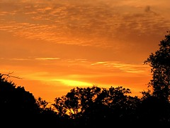 June Sunset (tquist24) Tags: sunset sky orange silhouette clouds canon spring indiana elkhart canonpowershotsx10is