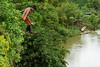 Tutunendo-Chocó (dresvarela) Tags: people verde rio gente selva choco rios quibdo tutunendo