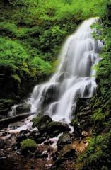 Fairy Falls 2 (Alan Amati) Tags: water oregon creek river portland waterfall nw northwest or columbia falls fairy waterfalls pacificnorthwest gorge columbiagorge columbiarivergorge fairyfalls wahkeena amati fairycreek alanamati