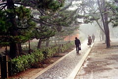 20-156 (ndpa / s. lundeen, archivist) Tags: trees people color film japan 35mm temple japanese kyoto landscaping path buddhist nick zen pedestrians 20 1970s 1972 complex grounds pathway dewolf honshu daitokuji stonepath  daitokujitemple nickdewolf photographbynickdewolf reel20