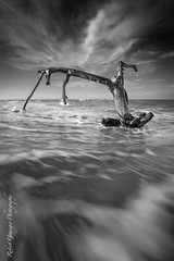 Different Perspectives (Rob Grainger) Tags: sea sky seascape abstract tree beach monochrome clouds mono log waves different arty perspective twisted beachscape