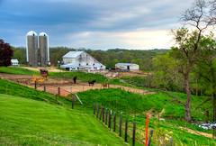 Iowa Farm (ap0013) Tags: rural us highway farm iowa agriculture 52 iowafarm us52 ushighway52