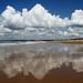 Plage des Conches - Longeville sur Mer