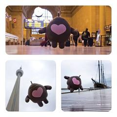 My first visit to Toronto, Canada in 2011. What a trip! (swissmixz) Tags: toronto canada welovelyka