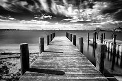 Cloudy Morning (Javier Huanay) Tags: light white black texture luz beach water birds pier agua nikon long exposure florida outdoor filter nubes javier bradenton d800 f28g huanay