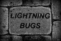 Lightning bugs (Thad Zajdowicz) Tags: leica urban bw white black brick monochrome words letters maryland sidewalk type 365 rockville zajdowicz
