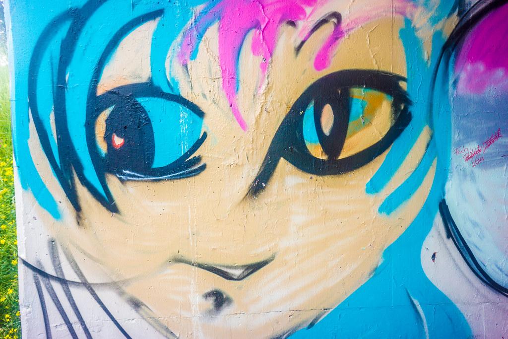 STREET ART AND GRAFFITI IN LIMERICK CITY