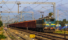 The freight train and The Western Ghats (Ashwin WAP5) Tags: ed moving background kerala can junction rake be western locomotive seen sr towards palakkad southindia westernghats ghats southernrailway indianrailways bcna hauled 28025 pgt wag7