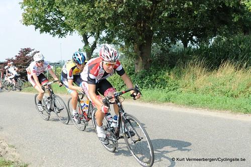 Geel Oosterlo  (98)