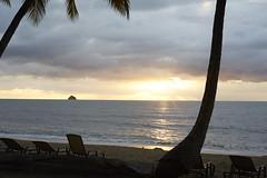 Palm Cove || Cairns, Australia (mcdraycott) Tags: morning light cloud sun tree beach sunrise island early chair cove australia palm qld queensland beaches cairns northern