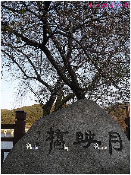 安東月映橋안동 월영교