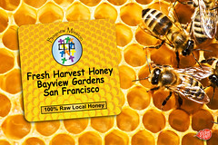 Bees on Honeycells Stickers (teamstickergiant) Tags: wild food abstract macro nature up animals yellow closeup out gold golden moving healthy woods pattern close sweet eating authority working large cell lifestyle insects sugar queen bee busy honey agility backgrounds hexagon medicine wax pollen shape honeycomb healthcare beehive leadership studious freshness combing efficiency beekeeper beeswax honeyed praiseworthy