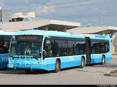 Viva #1373 (vb5215's Transportation Gallery) Tags: york bus nova transit region viva artic lfs yrt 2013