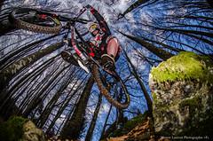 Saut de l'ange (Manonlemagnion) Tags: vtt dh dh727 vélo saut roche nature sousbois forêt nikond7000 105mm