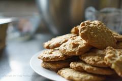 Vanilla Wafer Cookies (Ana Penelope) Tags: vanillawafer cookie anapenelope anapenelopedunwoody