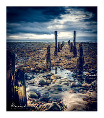 Relics (RonnieLMills) Tags: rotten wooden posts jetty seaweed stones pebbles sand beach shore sea newcastle slieve donard hotel county down