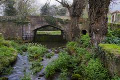 Rio Deva (davidiglesanchez) Tags: asturias gijón xixon deva rio naturaleza wildlife nikon