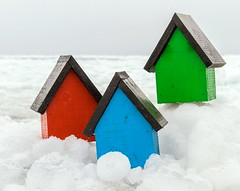 Little Sheds (Karen_Chappell) Tags: ice white frozen cold spring winter nfld newfoundland shed wood wooden paint painted red green blue rgb stilllife middlecove middlecovebeach canada atlanticcanada ocean sea three 3 black avalonpeninsula birdhouse house