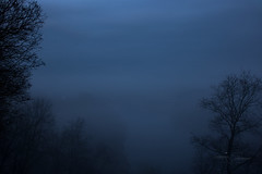 Landscape of Fog (modestmoze) Tags: fog landscape 2017 500px vilnius lithuania blue sky clouds river water branches trees travel explore beautiful view nature black shadows night white grey green forest park naturephotograph outside outdoors spring march horizon overlook frame