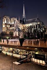 Hey tonight (CDeahr23) Tags: notredame paris france gothicchurch architecture night seineriver