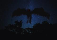 Mothman (mysteries illustrated) Tags: westvirginia pointpleasant mothman