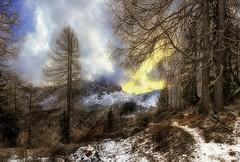 Dolomiti - Il sentiero delle Fate (Gio_guarda_le_Stelle) Tags: dolomiti dolomiten dolomites landscape wood mountain italy sunset enchantedwood