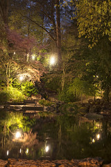 Secret Pond (Curtis Gregory Perry) Tags: ashland oregon night pond water park bench reflection tree nature secret calm dark longexposure nikon d810 50mm f12 pacific northwest path lithia duck