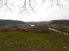 P1030142 (Unterwegs im Trierer Land) Tags: kanzem wiltingen saarbogen