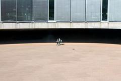 taking a break (overthemoon) Tags: switzerland suisse schweiz svizzera romandie vaud lausanne epfl polytechnic courtyard curves windows student smoking throughglass alone chair solitude blinds