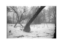 *** (Gediminas Bernotas) Tags: kodaktrix iso800 push winter bessar playground kodakhc110 bdilution vilnius fog mood