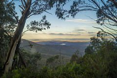 Canberra from the Brindabellas (cheekeemonkeez) Tags: brindabellas mt coree canberra australia sony a58