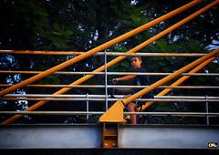 Between the cables (Otacílio Rodrigues) Tags: garoto boy bicicleta bike ponte bridge cabos cables árvores trees cablestayedbridge passarela pedestrianwalkway urban cidade city resende brasil oro inspiredbylove streetphoto topf25