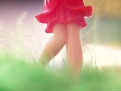 P4060696_red-skirt (koolpix_de) Tags: macro rokkor 45mm glaze monday