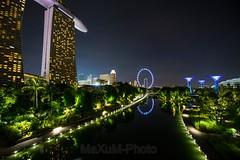 Singapur (Maxum1201) Tags: singapur singapureye marinabaysands night gardensbythebay water reflection lights