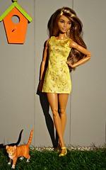 Skateboarder Barbie (Deejay Bafaroy) Tags: barbie madetomove mtm doll puppe mattel skateboarder skateboardfahrerin portrait porträt outdoors draussen cat katze kitty kätzchen mieze büsi playscale miniature miniatur schleich bullyland orange yellow gelb green grün