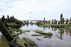 Ribs (95wombat) Tags: abandoned decay rotted tattered crusty marinegraveyard arthurkill statenisland newyork