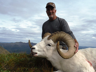Alaska Dall Sheep Hunt & Moose Hunt 23