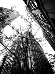 CatchMeIfYouCan (Street Witness) Tags: skyscape cityscape fidi nyc